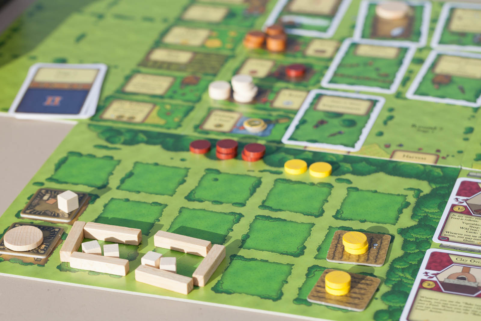 agricola-player-area-sheep-pigs