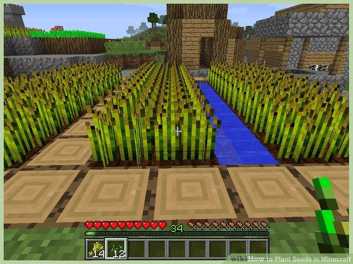 minecraft záhradka